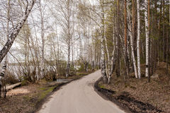 Camino en bosque a lo largo del lago en primavera temprana Imágenes de archivo libres de regalías