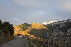 Camino en Córcega Foto de archivo libre de regalías
