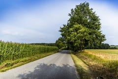 Camino en campo checo Imagen de archivo