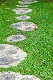 Camino en campo de hierba Imágenes de archivo libres de regalías