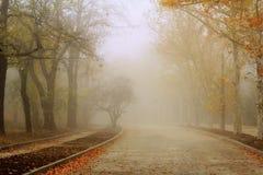 Camino en colores del otoño Fotos de archivo