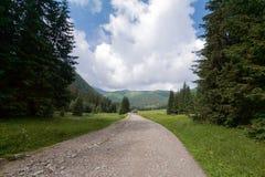 Camino en Dolina Chocholowska. Fotos de archivo