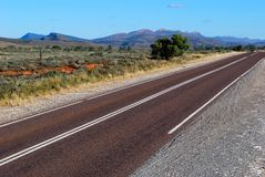 Camino en el arbusto australiano Fotos de archivo libres de regalías