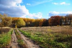 Camino en el bosque del otoño Foto de archivo libre de regalías