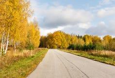 Camino en el bosque del otoño Foto de archivo