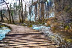 Camino en el bosque en el otoño Foto de archivo