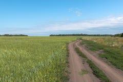 Camino en el campo Imagen de archivo