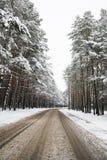 Camino en el invierno Imagenes de archivo