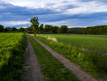Camino en el lado del país Foto de archivo