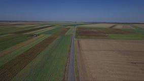 Camino en el medio de campos agrícolas almacen de metraje de vídeo