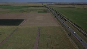 Camino en el medio de campos agrícolas almacen de video