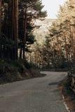 Camino en el medio del bosque en las montañas de Madrid imagen de archivo