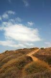 Camino en el medow Foto de archivo