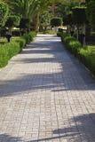 Camino en el parque Imagenes de archivo