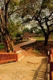 Camino en el parque en puesta del sol Fotografía de archivo libre de regalías