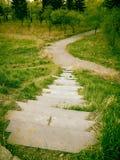 Camino en el parque en verano Imagen de archivo