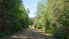 Camino en el salvaje, Quebec, Canadá imagen de archivo