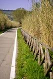 Camino en el verde Imagenes de archivo