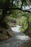 Camino en el yermo, Mesa Verde Fotografía de archivo