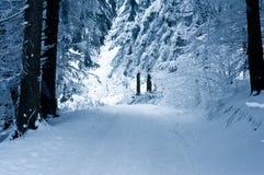 Camino en invierno Imagen de archivo libre de regalías