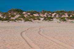 Camino en la arena Imágenes de archivo libres de regalías