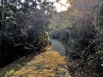 Camino en la colina fotografía de archivo