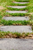 Camino en la hierba Fotos de archivo libres de regalías