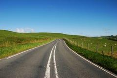Camino en la montaña en País de Gales Fotografía de archivo