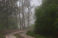 Camino en la niebla Pista en la niebla y las nubes de la montaña foto de archivo