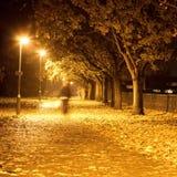 Camino en la noche Fotos de archivo libres de regalías