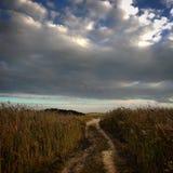 Camino en la playa Fotos de archivo libres de regalías
