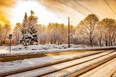 Camino en la puesta del sol en invierno Fotografía de archivo libre de regalías
