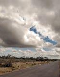 camino en la sabana africana fotografía de archivo libre de regalías