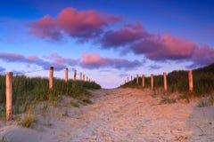 Camino en las dunas de arena en la puesta del sol fotos de archivo libres de regalías