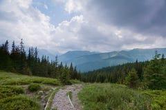 Camino en las montañas del oeste de Tatra. Fotografía de archivo