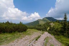 Camino en las montañas del oeste de Tatra. Imágenes de archivo libres de regalías