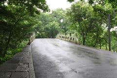 Camino en lluvia foto de archivo libre de regalías