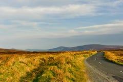 Camino en montañas, Wicklow, Irlanda Imagen de archivo libre de regalías