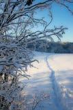 Camino en nieve. Imágenes de archivo libres de regalías