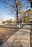 Camino en parque Imagen de archivo libre de regalías