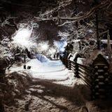 Camino en parque del invierno Foto de archivo