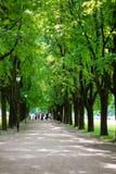Camino en parque en Oslo Imagen de archivo