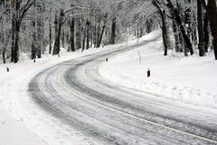 Camino en primer plano, que da vuelta al bosque del hielo imagen de archivo libre de regalías