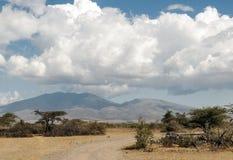 Camino en Tanzania Foto de archivo libre de regalías