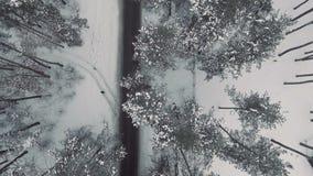 Camino en un bosque del invierno desde arriba almacen de video