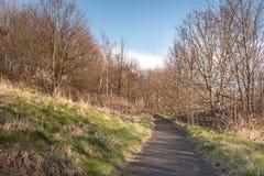 Camino en una colina Fotografía de archivo libre de regalías