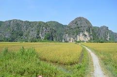 Camino en viettnam Fotografía de archivo libre de regalías