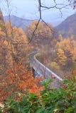 Camino entre el bosque del otoño en el valle de Nakatsugawa - Yama, Fukushima, Japón foto de archivo libre de regalías