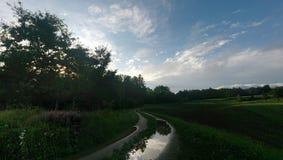Camino entre el bosque y el campo después de la precipitación Foto de archivo libre de regalías