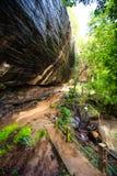 Camino entre la roca y el bosque Imagen de archivo libre de regalías